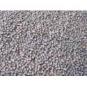 Karpiowy mini pellet - 1kg - Karel Nikl