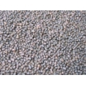 Karpiowy mini pellet - 3kg - Karel Nikl